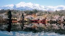 【春】残雪の妙高と桜のコラボレーション 松が峰の桜