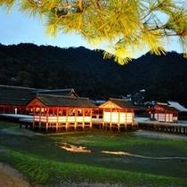 厳島神社(ライトアップ)