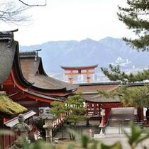 ★厳島神社裏手から見える大鳥居