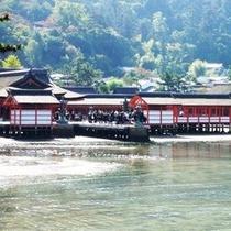 ★宮島厳島神社