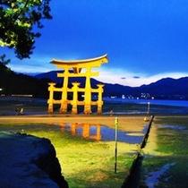 ☆宮島 大鳥居 夜景1