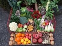 群馬県産季節の食材①