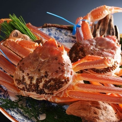 【昼食】【活・津居山蟹フルコース(おひとり2杯)】希少ブランド地蟹「津居山蟹」を贅沢に味わう蟹づくし