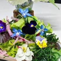 花ごはん 季節の一の倉サラダ
