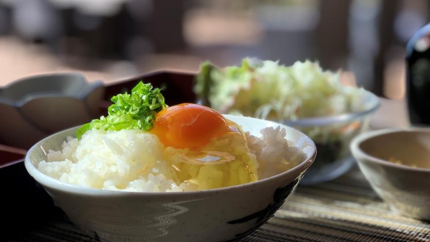 朝食(卵かけごはん)