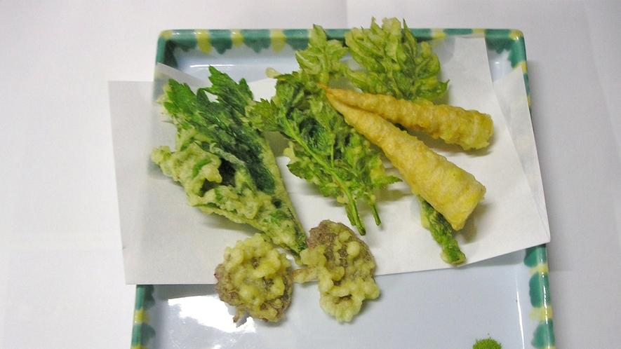 *料理一例【春】/周辺の山で採れた山菜を使った天ぷら。春ならではのお楽しみです。