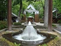 タリアセン(塩沢湖)宿から車10分