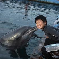 イルカに会いに行こう