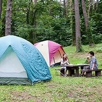 *[オートキャンプサイト一例]各サイトは林で区切られており、ちょっとしたプライベート空間!