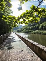 八瀬川遊歩道