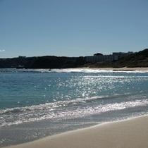 透明度の高い白浜の海