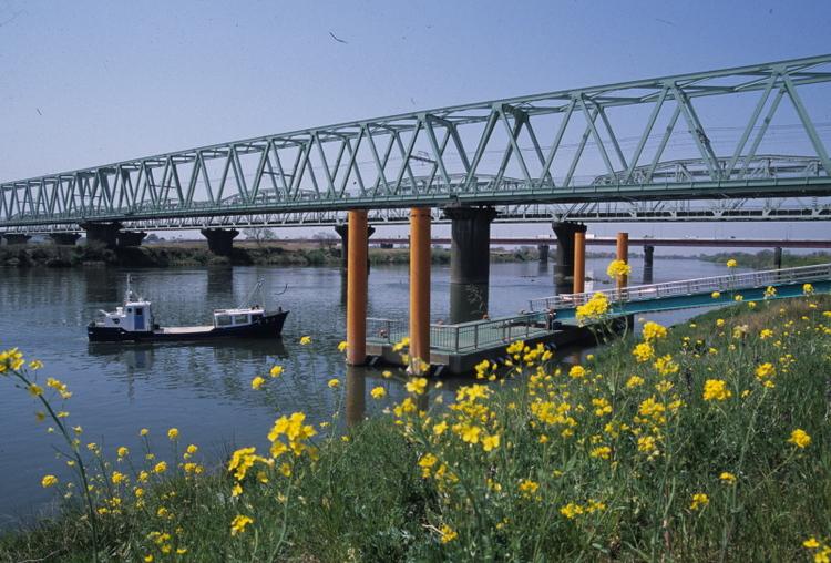 近隣風景【利根川・河川敷】