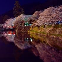 人気お花見スポット『久松公園』の夜桜。