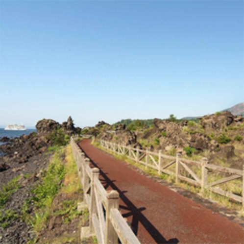 遊歩100選の選ばれた「溶岩なぎさ遊歩道」