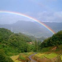 雨上がりの一時(虹)