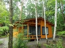 新B棟の外観です。自然林に囲まれています。