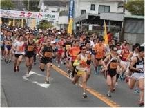 オレンジマラソン【3月下旬】