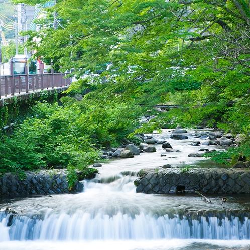 藤木川の清流を眺めながら湯河原散策