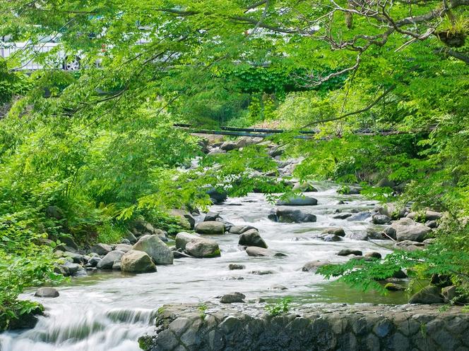 お宿の前には藤木川が流れ、川のせせらぎが聞こえます♪