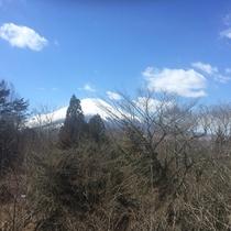 当館からは富士山が綺麗に見えます