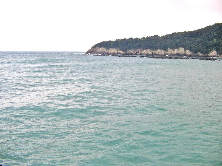 土佐湾 3