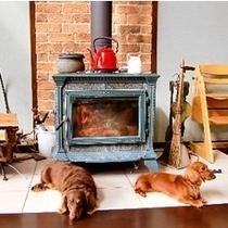 ペットもお気に入りの暖炉