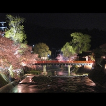春の中橋と桜(夜景)