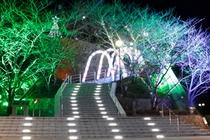 牛岐城址公園(夜間ライトアップ)