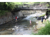 周辺 川遊び2