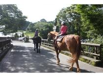 周辺 乗馬体験2