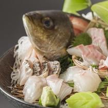 旬の瀬戸内魚
