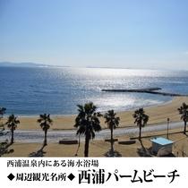 【周辺観光】西浦パームビーチ