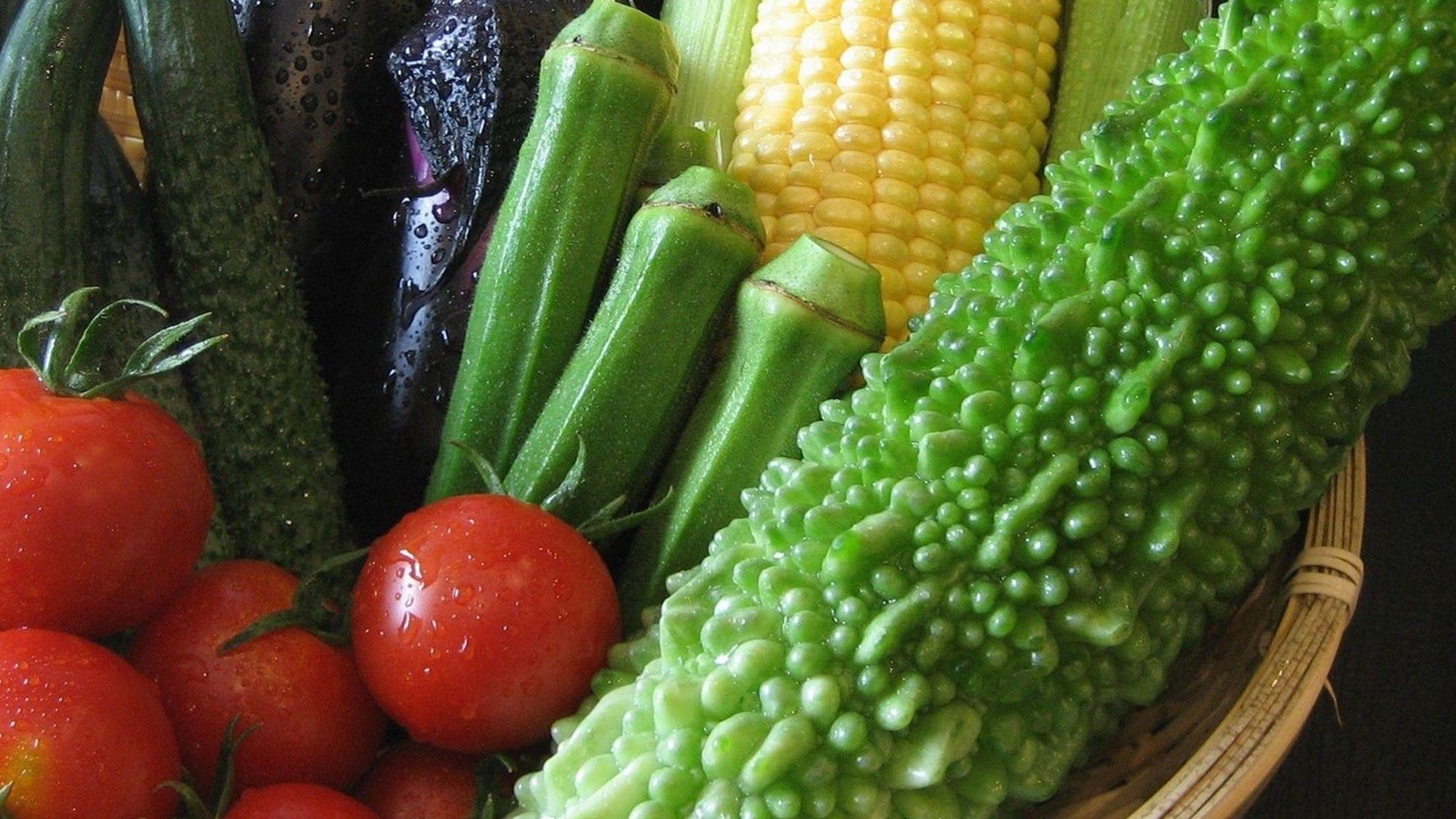 夏の信州野菜フェア みずみずしい夏野菜です♪