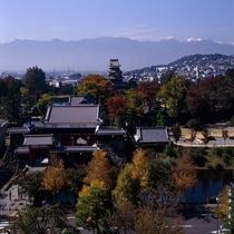 紅葉が美しい 秋の松本城