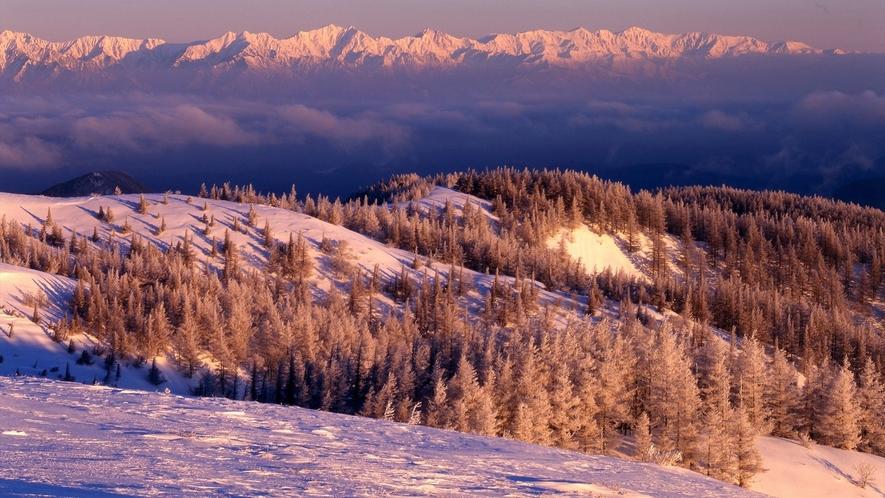 雪化粧をした冬の美原高原