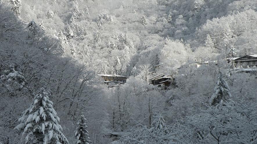 冬の白骨温泉