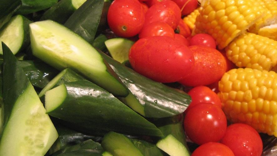 夏の信州野菜フェア 新鮮野菜のバリバリサラダ