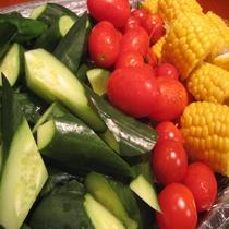 夏の信州野菜フェア 新鮮野菜のバリバリサラダ(キュウリ・トマト・コーン)