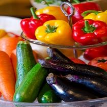 新鮮な高原野菜