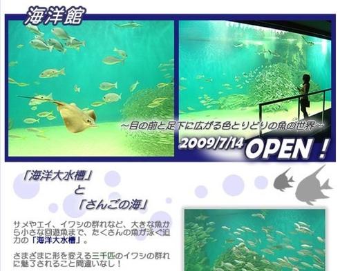 イルカやペンギンが待っています!【越前松島水族館】入場券付プラン!朝食無料