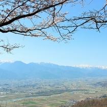 春の光城山