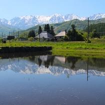 夏・初夏の白馬水鏡