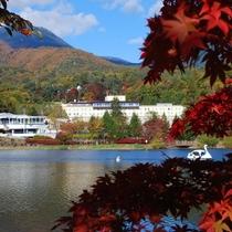 紅葉もゆるホテル周辺 - 朝の散歩は絶対おすすめです♪