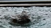 ■東天ノ湯 ジェットバスも楽しめる貸切露天風呂
