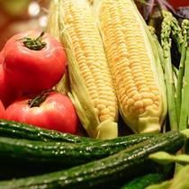 地元の採れたて新鮮野菜を使用しております