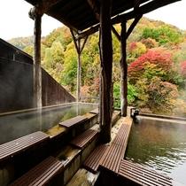 女性大浴場「美人の湯」の露天風呂
