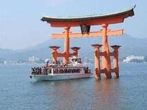 【観光情報】宮島までJRとフェリーで約50分。
