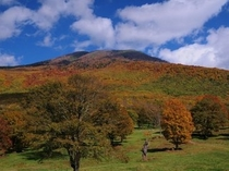 2012年紅葉12 笹ヶ峰