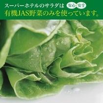 サラダすべてJIS有機野菜です☆