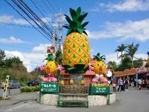 お子さまに人気のパイナップルパーク♪(宿から車で25分)